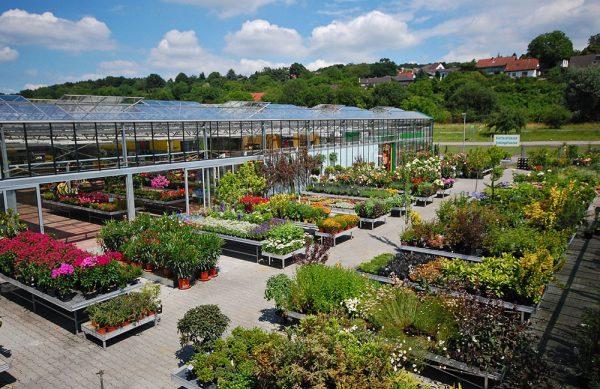 Ihr Gartencenter in Langen
